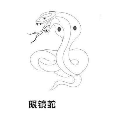 蛇画法步骤简笔画
