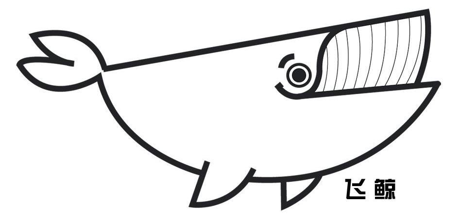 蓝鲸怎么画简笔画