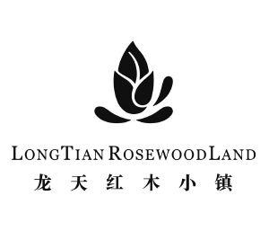 龙天红木小镇 longtian rosewoodland