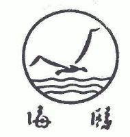 初中生海鸥简笔画大全