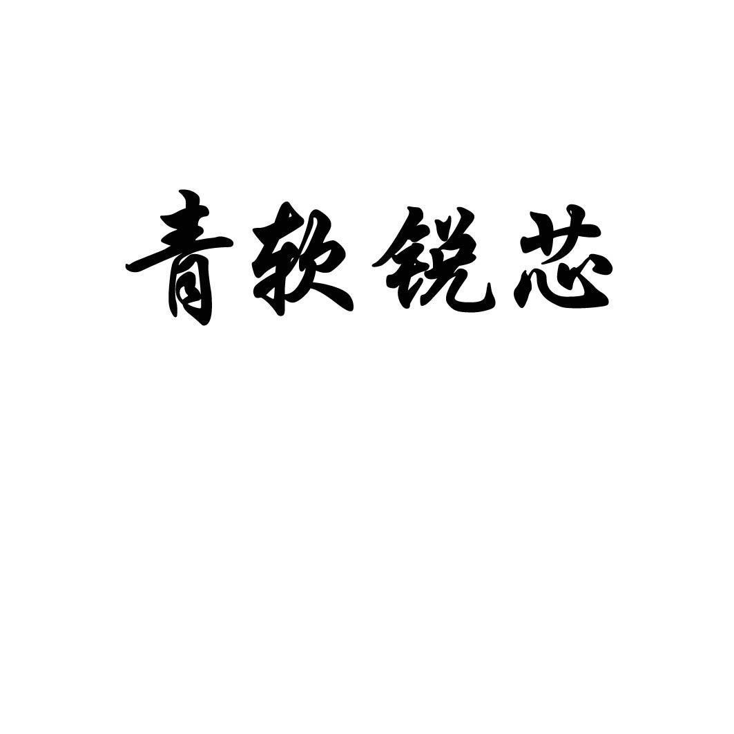 青岛青软锐芯电子科技有限公司