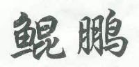 鲲鹏纹身图案手稿