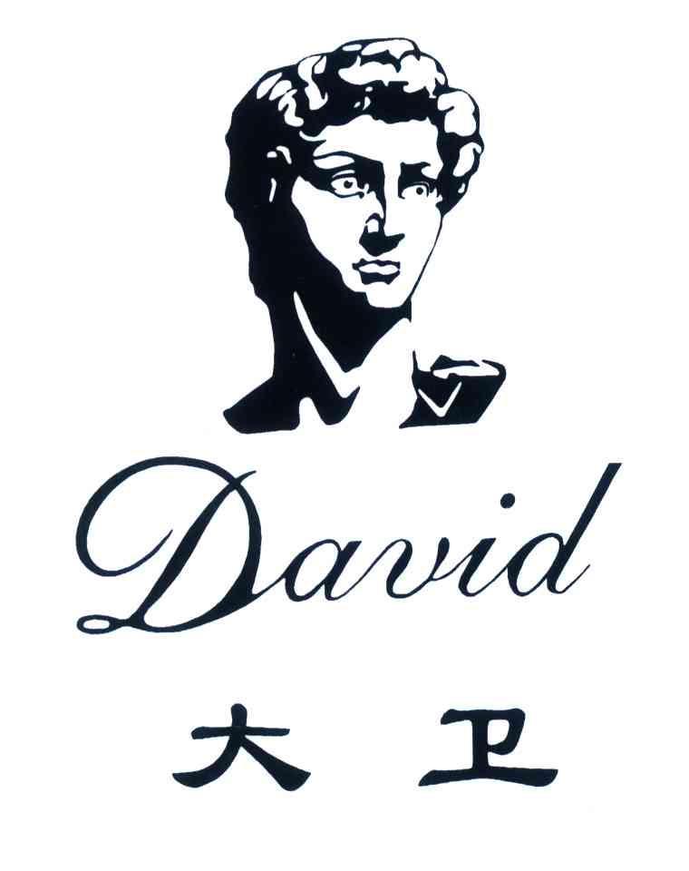 大卫头像矢量图素材