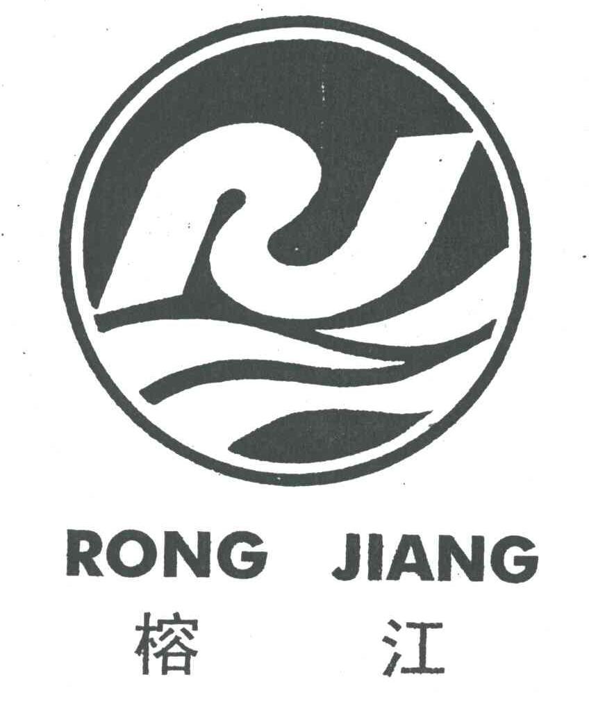 飞龙  logo 素材