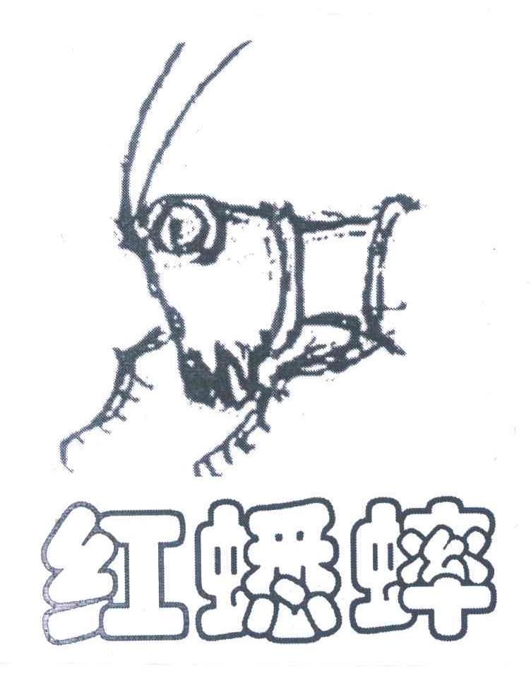 蟋蟀简笔画画法步骤