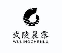 吉首武陵汽车城logo