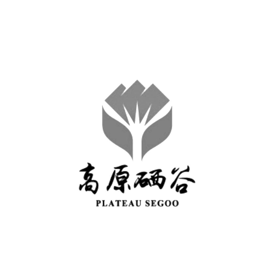 贵州高原硒谷电子商务有限公司